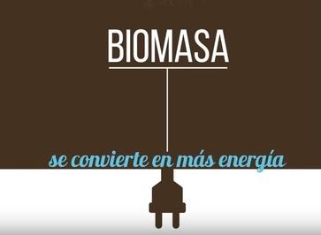La importancia del incentivo a la generación de Energía Eléctrica a partir de Biomasa Agropecuaria