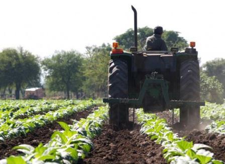 Informe sobre la ley que regula el Régimen de Trabajo Agrario