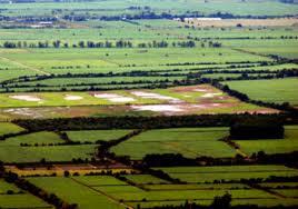 Informe sobre la Ley de Régimen de Protección al Dominio Nacional sobre la Propiedad, Posesión o Tenencia de las Tierras Rurales