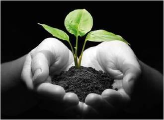 La preservación del recurso suelo