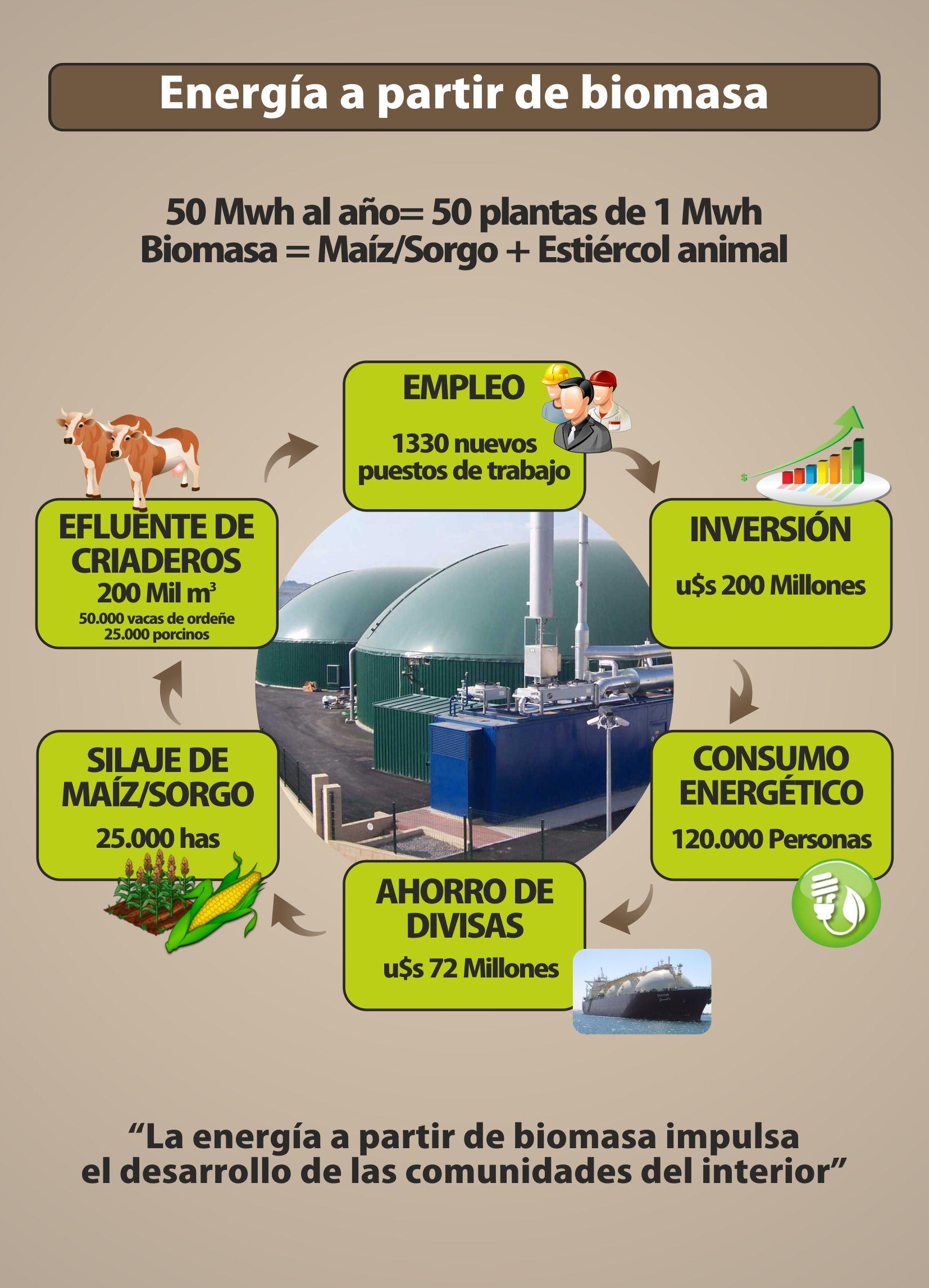 Desarrollo Regional con Energía a partir de Biomasa