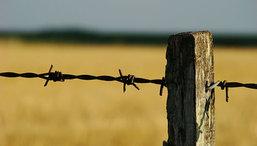 Arrendamientos: la actual simplicidad vs. la regulación excesiva