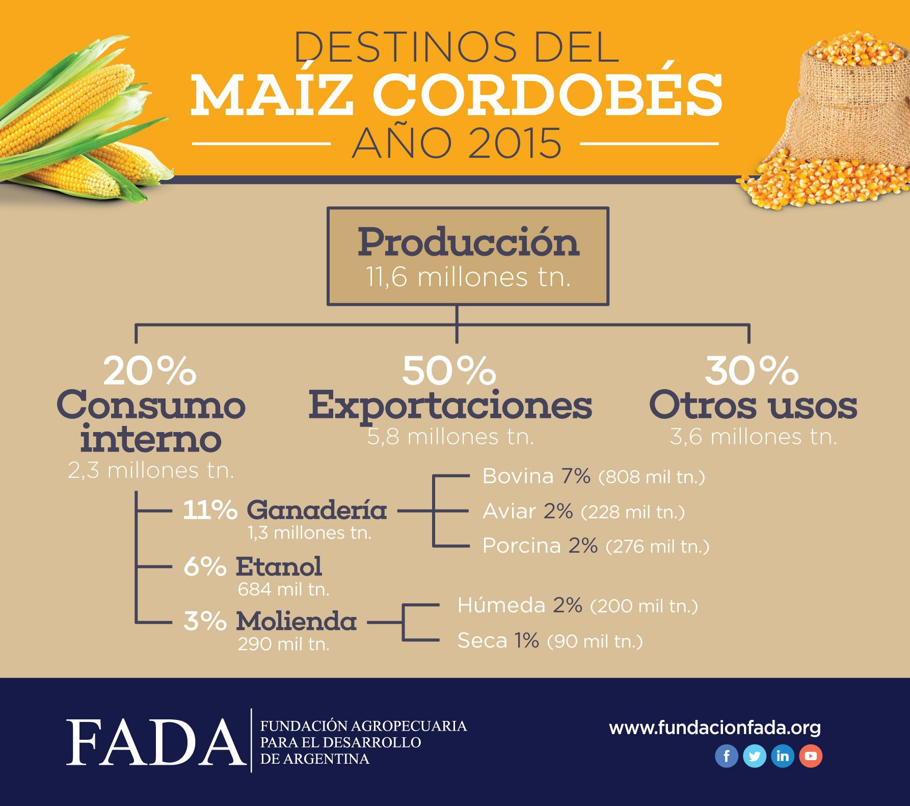 Cadena de valor de maíz en Córdoba
