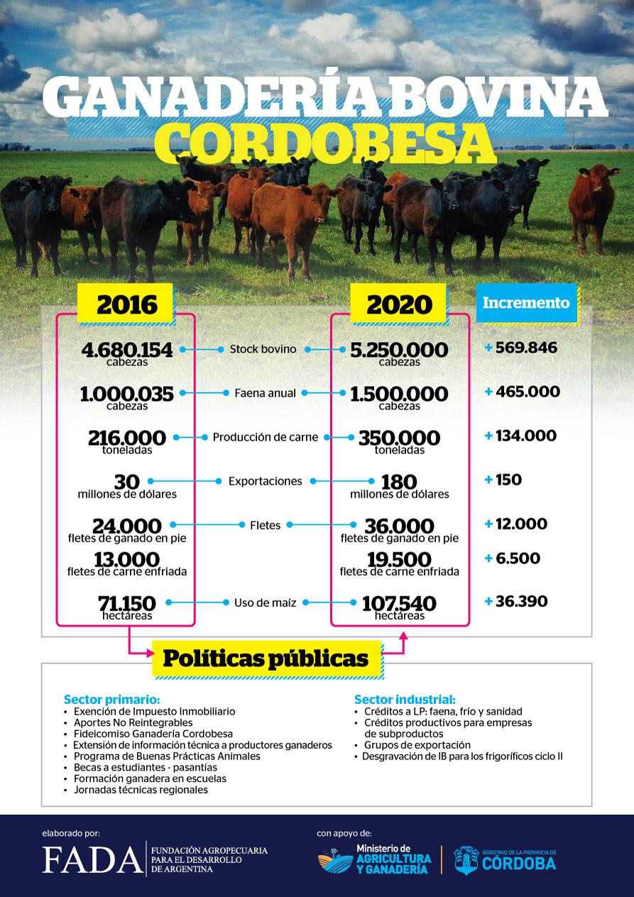 La ganadería bovina en Córdoba