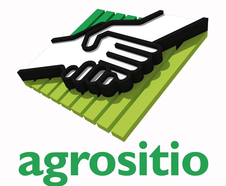 La producción agropecuaria es pilar de la economía y las exportaciones entrerrianas, por José Ignacio Colombatto