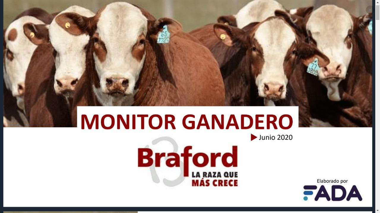 Monitor Ganadero – Junio 2020