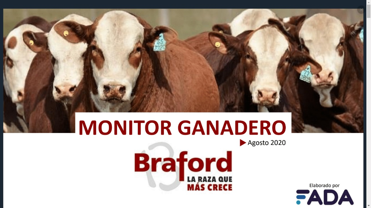 Monitor Ganadero – Agosto 2020