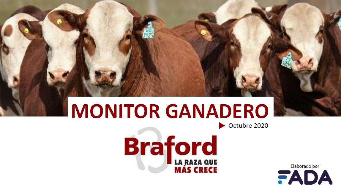 Monitor Ganadero – Octubre 2020