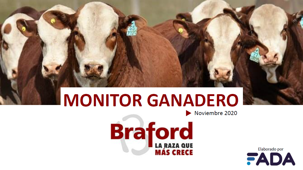 Monitor Ganadero – Noviembre 2020