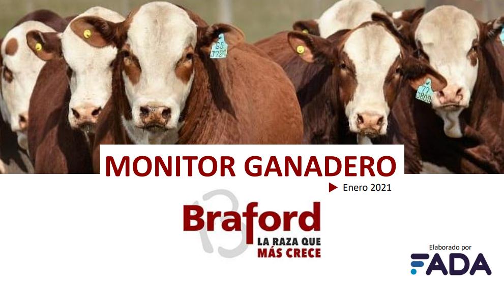 Monitor Ganadero – Enero 2021