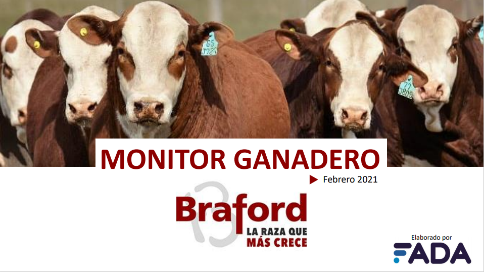 Monitor Ganadero – Febrero 2021