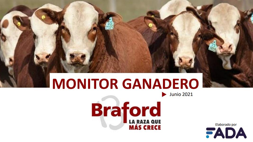 Monitor Ganadero – Junio 2021